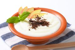 Manna lub ryżowy pudding z jabłkiem i czekoladą obrazy stock
