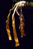 Mannakrobat in der Aktion in einem Zirkus Lizenzfreie Stockbilder