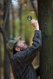 Manndetektiv mit einem Bart überprüft einzelnes trockenes Blatt Stockbild