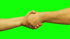 Mannelijk en vrouwelijk geïsoleerd handenhandenschudden stock footage