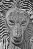 Mannelijk leeuwbeeldhouwwerk Stock Foto's