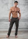 Mannelijk Model Royalty-vrije Stock Afbeeldingen