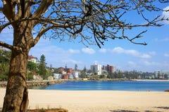 Mannelijk Strand Australië Stock Fotografie