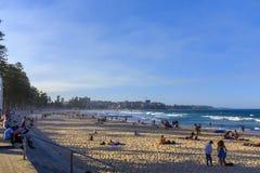 Mannelijk Strand op het gebied van Sydney royalty-vrije stock afbeeldingen