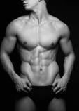 Mannelijk torso stock afbeelding