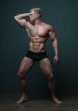 Mannelijk torso royalty-vrije stock foto's