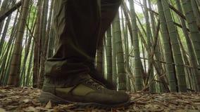 Mannelijke Benen in Trekkingsschoenen die in Bamboe Forest Close Side View wandelen stock videobeelden