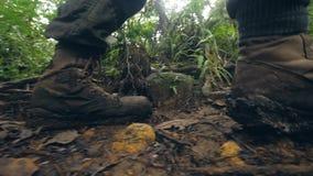 Mannelijke benen in trekkingsschoenen die op vuile weg in regenwoud lopen terwijl de zomerstijging Toeristenmens die in tropisch  stock video