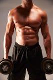 Mannelijke bodybuilder die zware domoren houden stock foto's