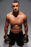 Mannelijke bodybuilder die zware domoren houden, die aan camera kijken stock afbeeldingen