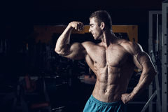 Mannelijke bodybuilder, geschiktheidsmodel Stock Afbeeldingen