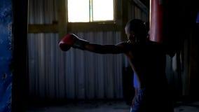 Mannelijke boksers die het in dozen doen in geschiktheidsstudio uitoefenen stock video