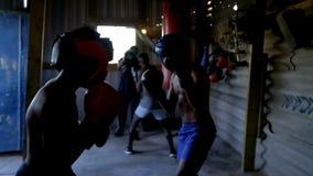 Mannelijke boksers die het in dozen doen in geschiktheidsstudio uitoefenen stock footage