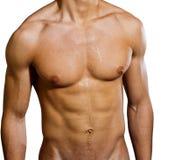 Mannelijke borst Royalty-vrije Stock Afbeeldingen