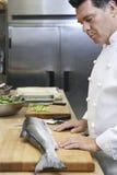 Mannelijke Chef-kok Observing Salmon In Kitchen stock afbeeldingen