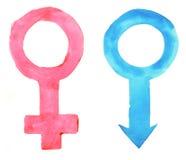 Mannelijke en vrouwelijke geslachtssymbolen op kleurenachtergrond Royalty-vrije Stock Fotografie