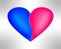 Mannelijke en vrouwelijke harten Stock Afbeeldingen