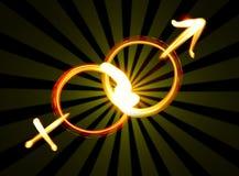 Mannelijke en vrouwelijke symbolen Stock Afbeeldingen