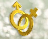 Mannelijke en Vrouwelijke symbolen vector illustratie