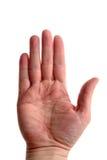Mannelijke Hand Royalty-vrije Stock Afbeeldingen