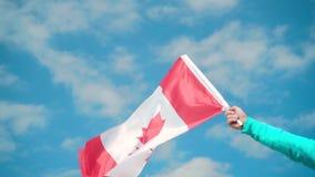 Mannelijke hand die een vlag van Canada houden De vlag van Canada ontwikkelt zich in de wind tegen een hemel stock footage