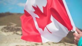 Mannelijke hand die een vlag van Canada houden De vlag van Canada ontwikkelt zich in de wind tegen een hemel stock video