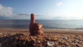 Mannelijke handstokken uit zand duim-omhoog O.k. goed idee bij onscherpe blauwe zeewaterachtergrond stock videobeelden