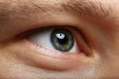 Mannelijke juiste groene oog extreme close-up Stock Afbeelding