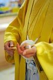 Mannelijke Kimono Stock Afbeelding