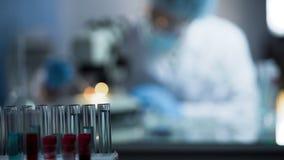 Mannelijke laboratoriummedewerker die genetisch onderzoek leiden, die DNA-vaderschaptest uitvoeren stock foto's