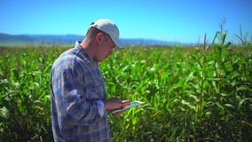 Mannelijke landbouwersmens die digitale tabletcomputer, technologie op graangebied met behulp van, die kwaliteit van installaties stock video