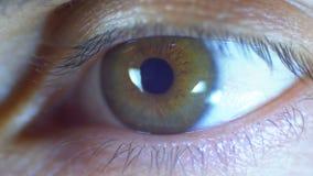 Mannelijke Menselijke Oogknipoogjes Close-up stock video