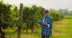 Mannelijke onderzoeker die bomen bekijken terwijl het schrijven op klembord stock footage