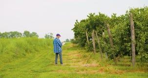 Mannelijke onderzoeker die bomen bekijken terwijl het schrijven op klembord stock videobeelden