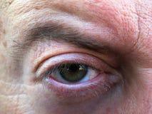 Mannelijke oog en wenkbrauw Stock Afbeelding