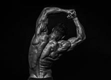 Mannelijke rug Stock Foto