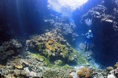 Mannelijke Scuba-duiker met camera in onderwaterswimthrough stock afbeelding