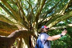 Mannelijke toerist die foto van zich nemen dichtbij reuze banyan boom op Hawaï Takken en hangende wortels van reuze banyan boom o stock fotografie