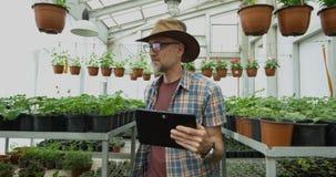 Mannelijke tuinman die foto's in serre nemen stock video