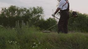 Mannelijke tuinman die met beroepsuitrusting in tuin werken stock video