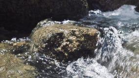 Mannelijke voet die op steen in stromende rivier stappen Mannelijke voet in schoen die langs rotsachtige bergrivier lopen in reis stock videobeelden