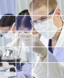 Mannelijke & Vrouwelijke Wetenschappelijke Onderzoekers in Laboratorium royalty-vrije stock foto's