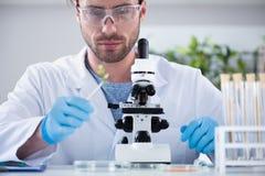 Mannelijke wetenschapper tijdens het werk bij modern biologisch laboratorium stock foto's