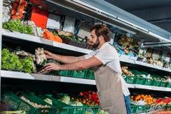 mannelijke winkelmedewerker in schort die verse groenten schikken stock afbeelding