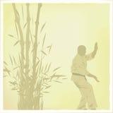 mannen är förlovad i karate royaltyfri illustrationer