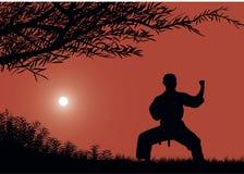 mannen är förlovad i karate stock illustrationer