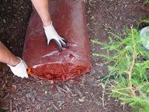 Mannen öppnar komposttäckningpåsen för trädgård Royaltyfria Bilder