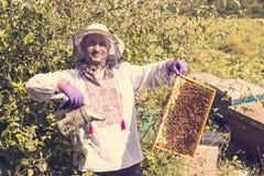 Mannen arbetar i en bikupa som samlar bihonung Royaltyfri Bild