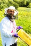 Mannen arbetar i en bikupa som samlar bihonung Royaltyfria Foton