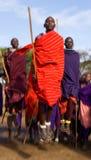 Mannen av en stamMasai visar rituella hopp Royaltyfria Foton